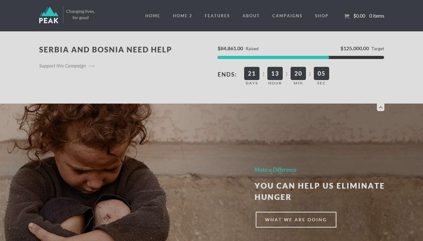 Шаблон WordPress для благотворительного фонда и пожертвований (3)