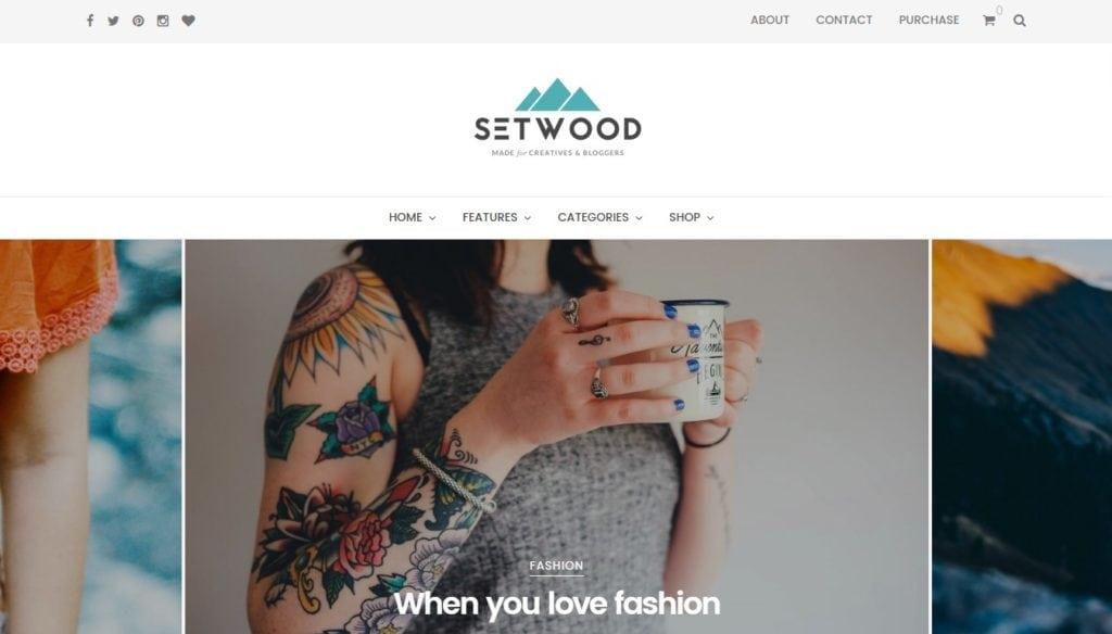 лучшие минималистские темы WordPress для бизнеса и блогов 2 08