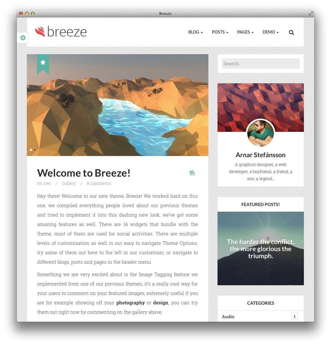 минималистские темы WordPress для бизнеса и блогов11