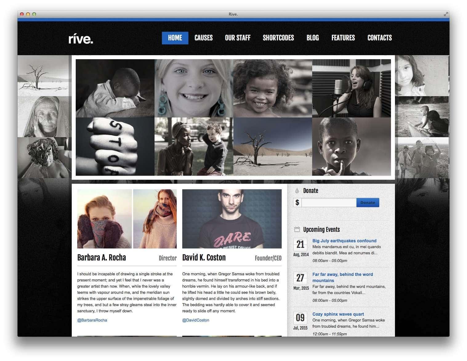WordPress для благотворительных организаций10