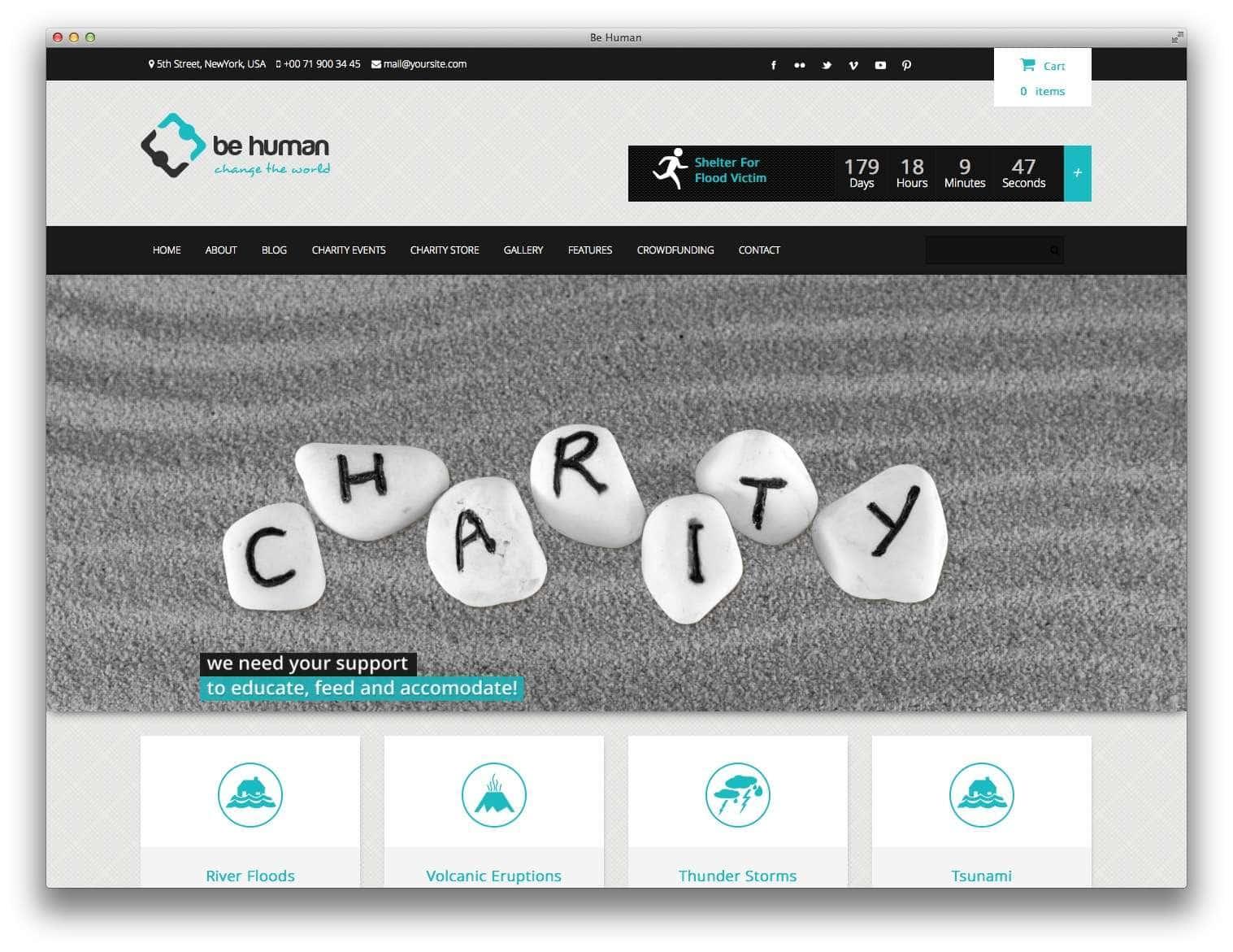 WordPress для благотворительных организаций12