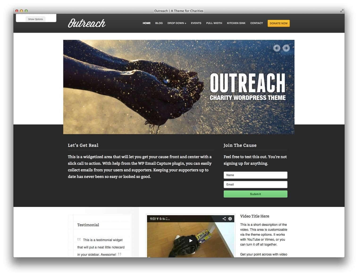 WordPress для благотворительных организаций13