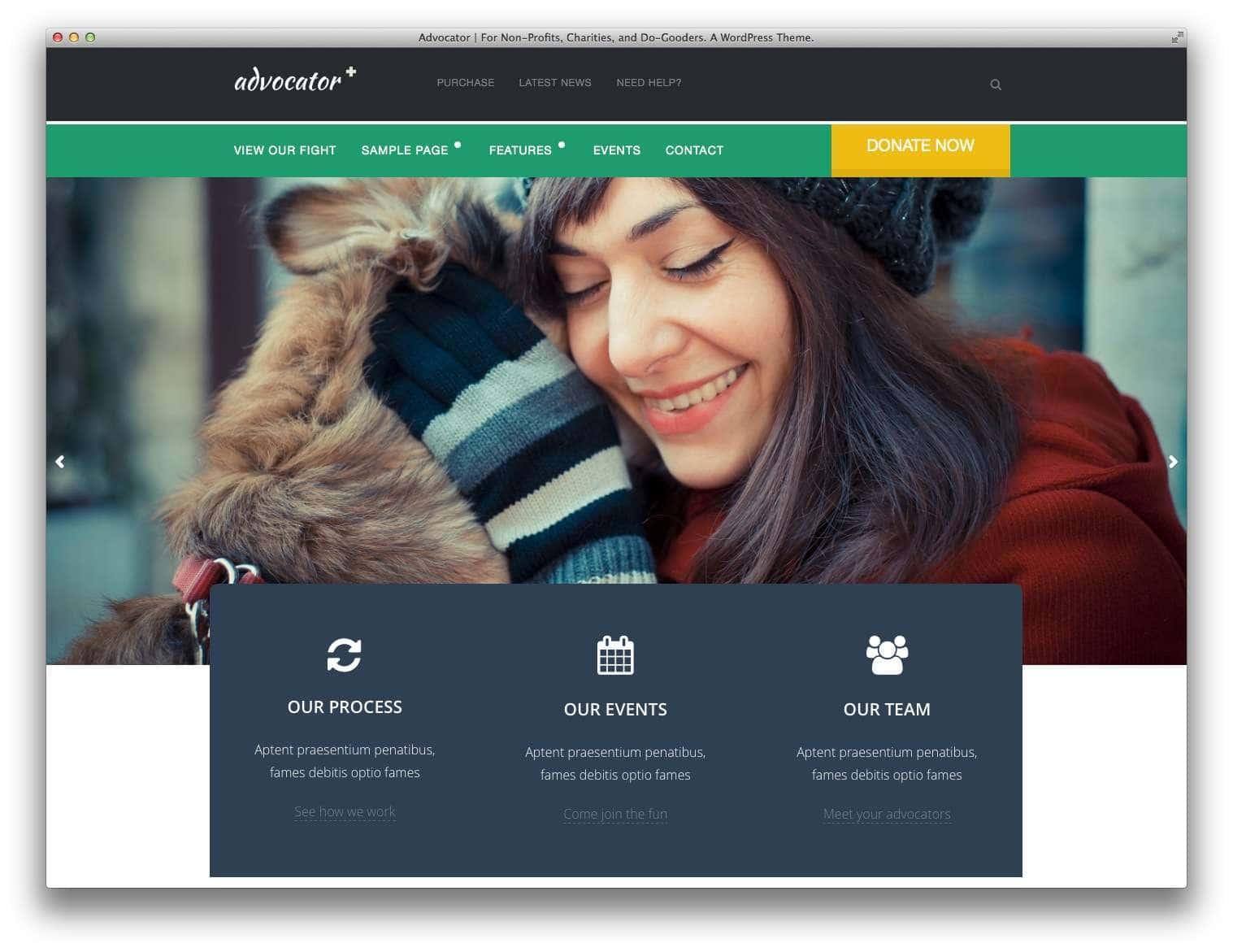 WordPress для благотворительных организаций14