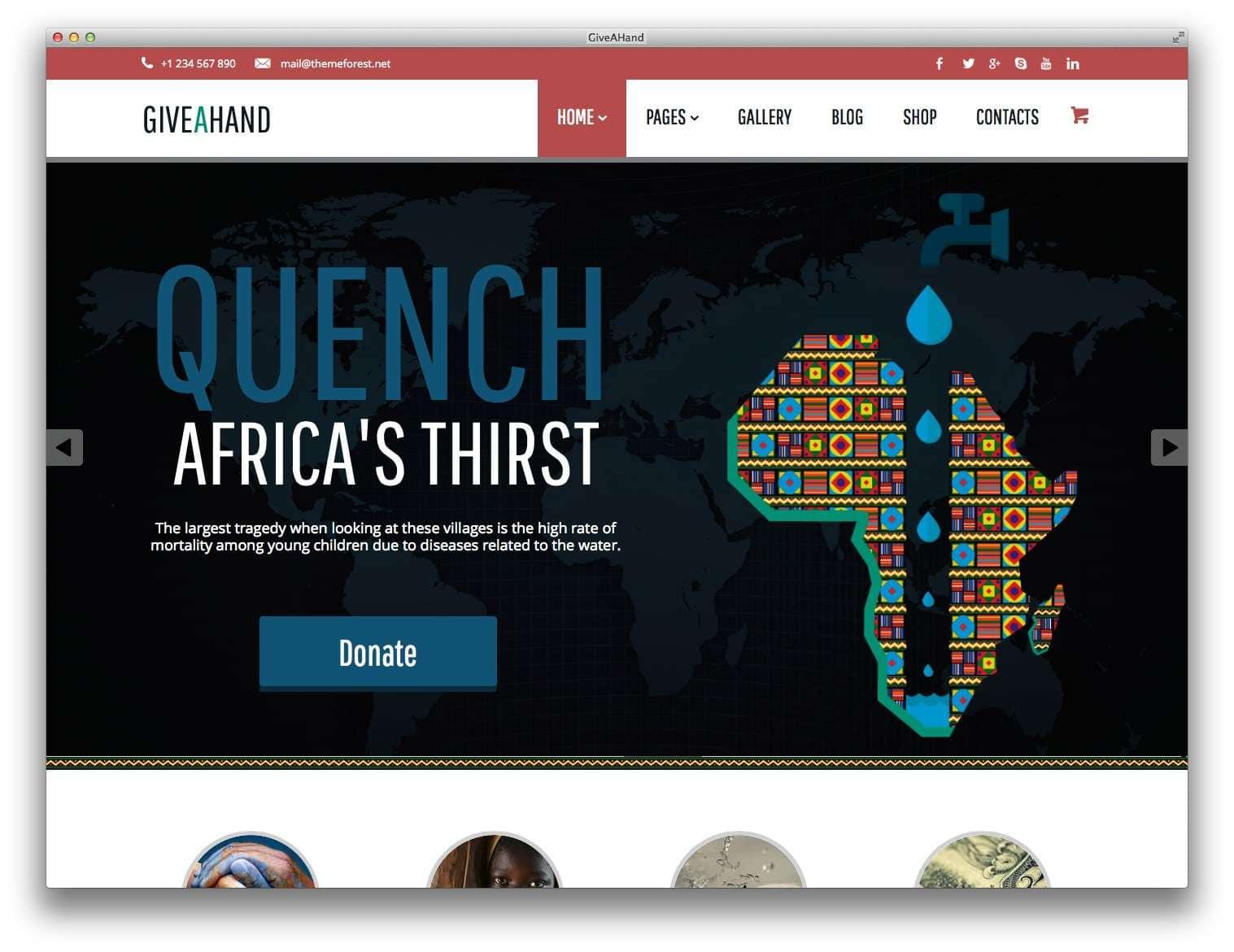 WordPress для благотворительных организаций8