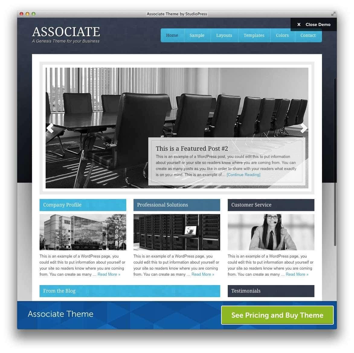 WordPress – Адвокаты и юридическая практика17