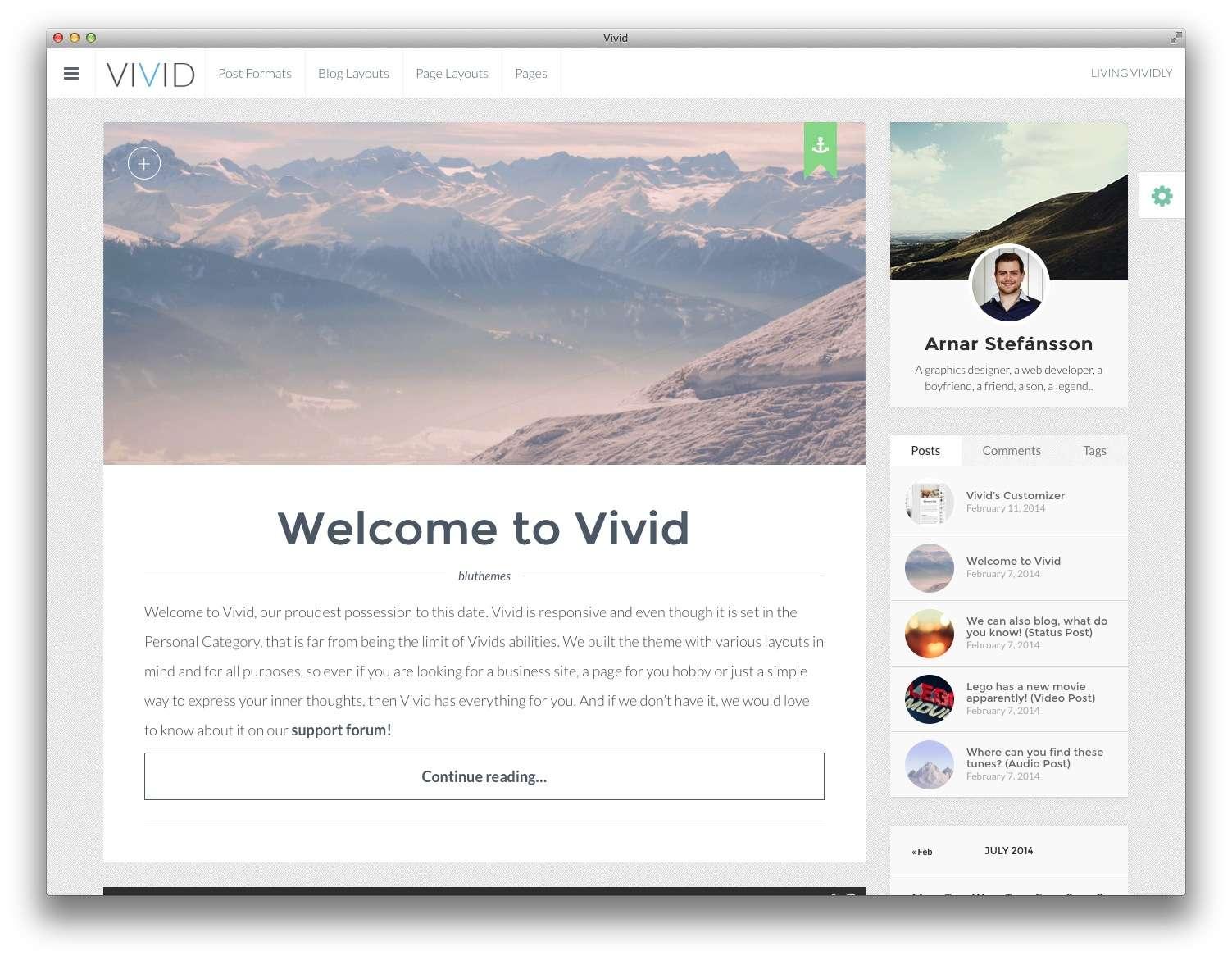 wordpress шаблон Vivid