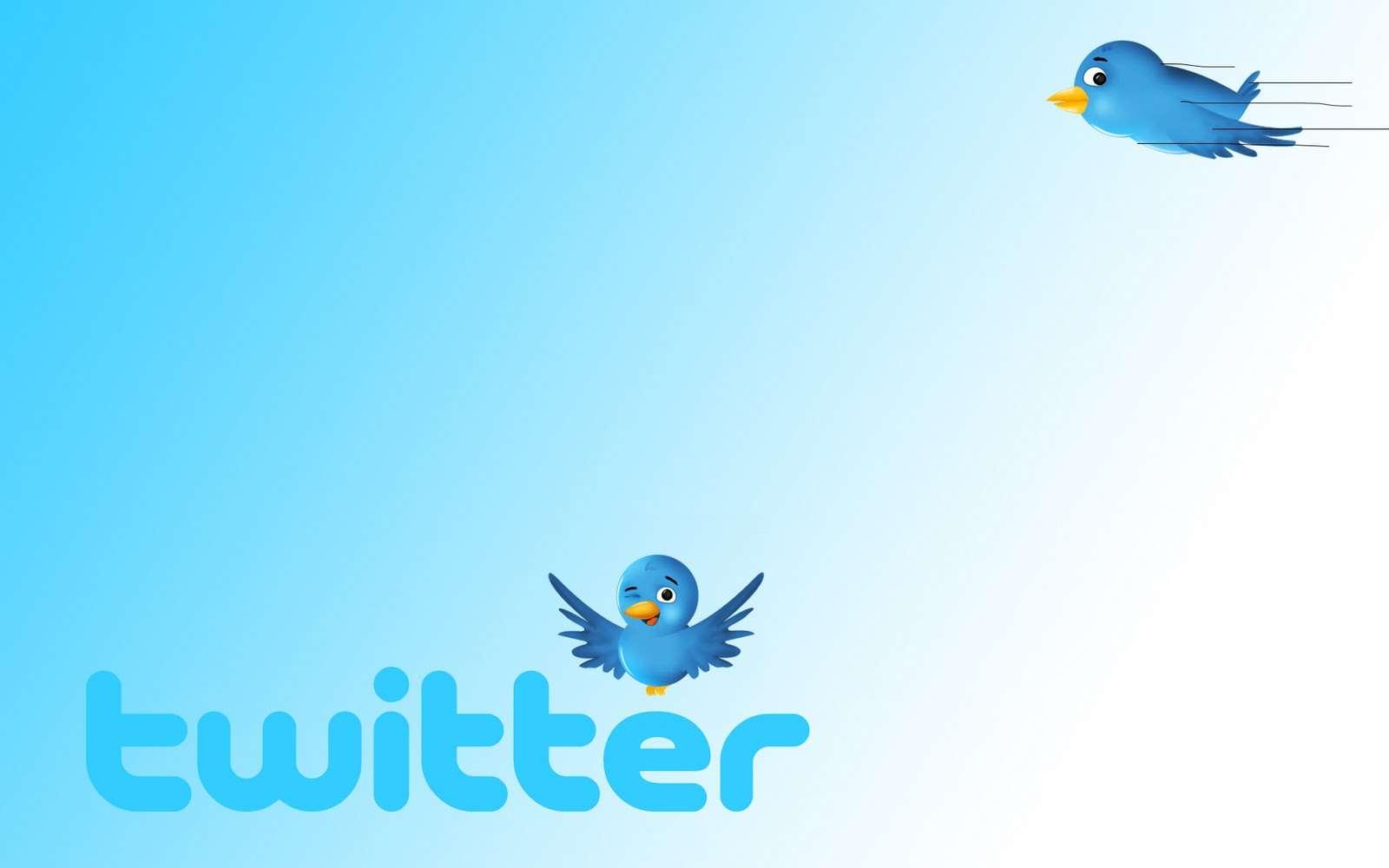 Основы Twitter-10 основных определений