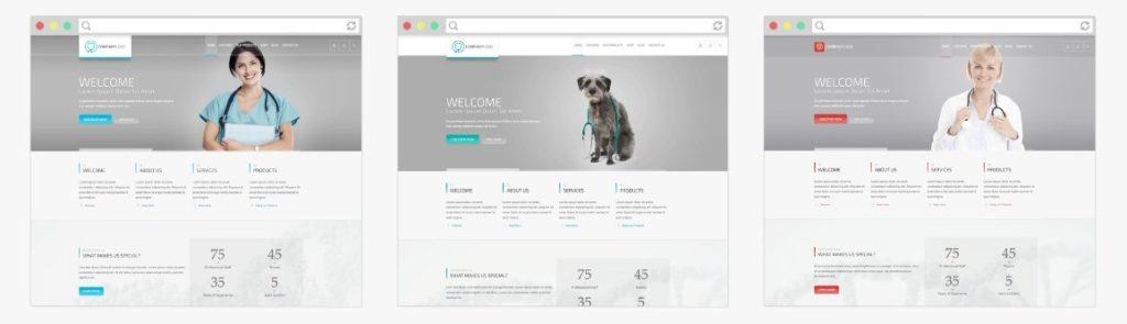 WordPress темы о здоровье и медицине 03