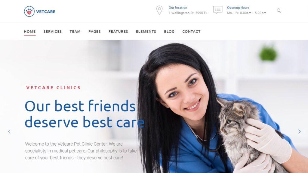 WordPress темы о здоровье и медицине 04