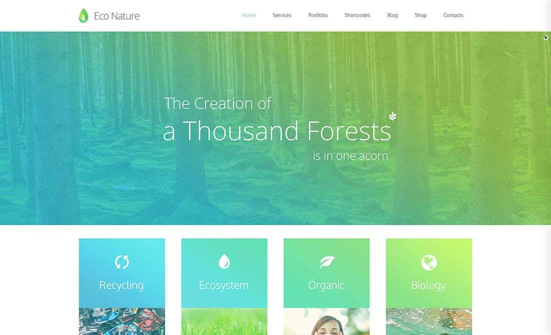 Зеленые темы WordPress – Сайты об экологии, органической пище, ЭКО-бизнесе