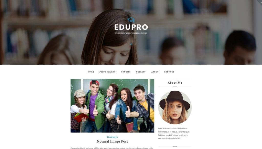 Как создать образовательный сайт на WordPress с расписанием 03