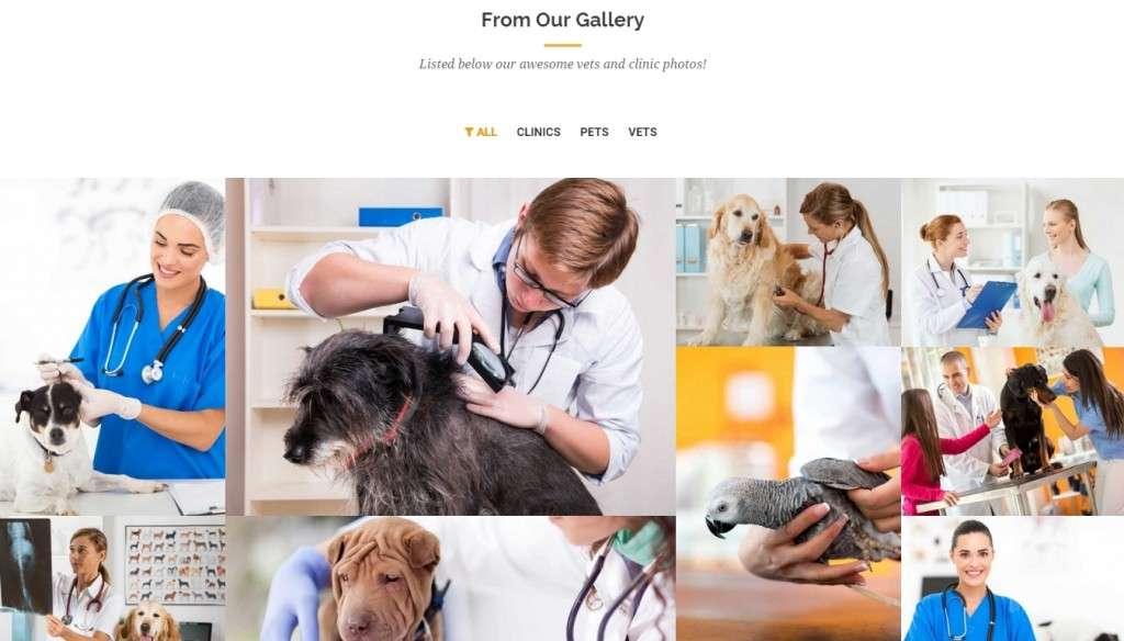 отличный шаблон сайта ветеринарной клиники WordPress 2016