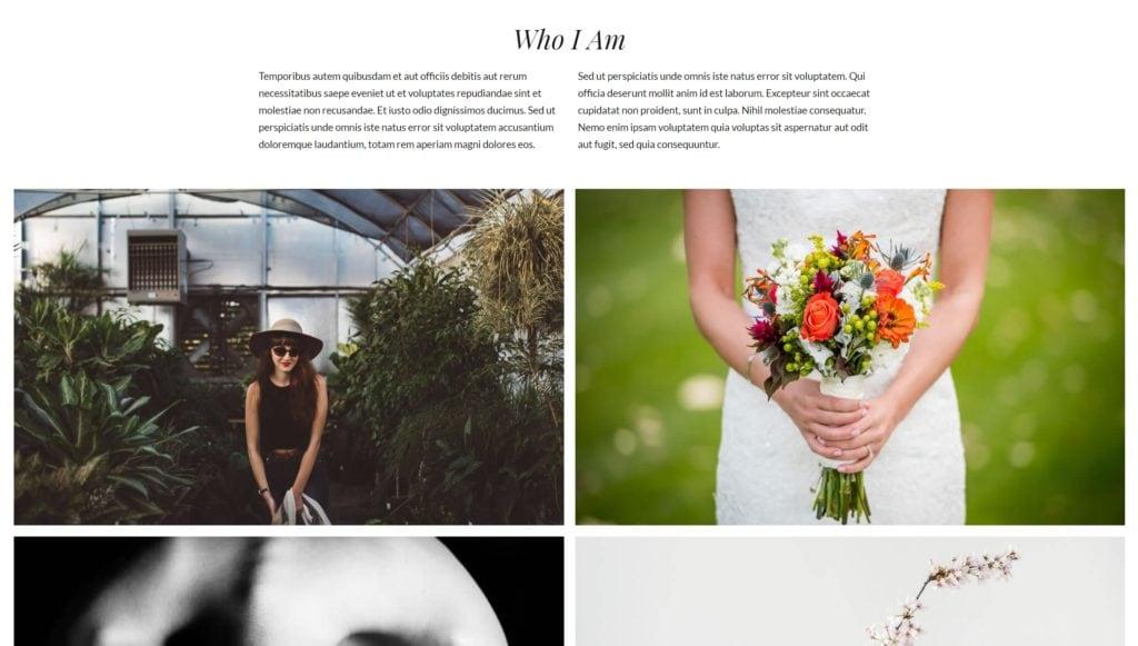 шаблон сайта фотографа с красивой галереей, портфолио и блогом для начинающих и профессионалов 12