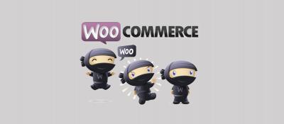 Как обезопасить свой магазин WooCommerce – Несколько советов