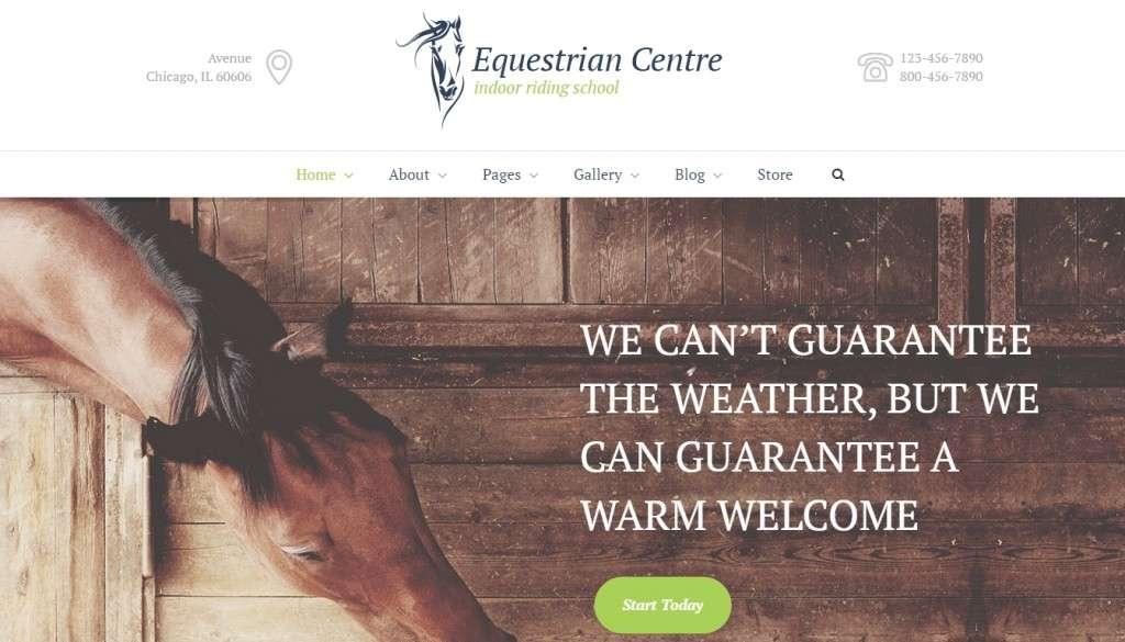 WordPress шаблоны для верховой езды, ипподрома, конного cпорта