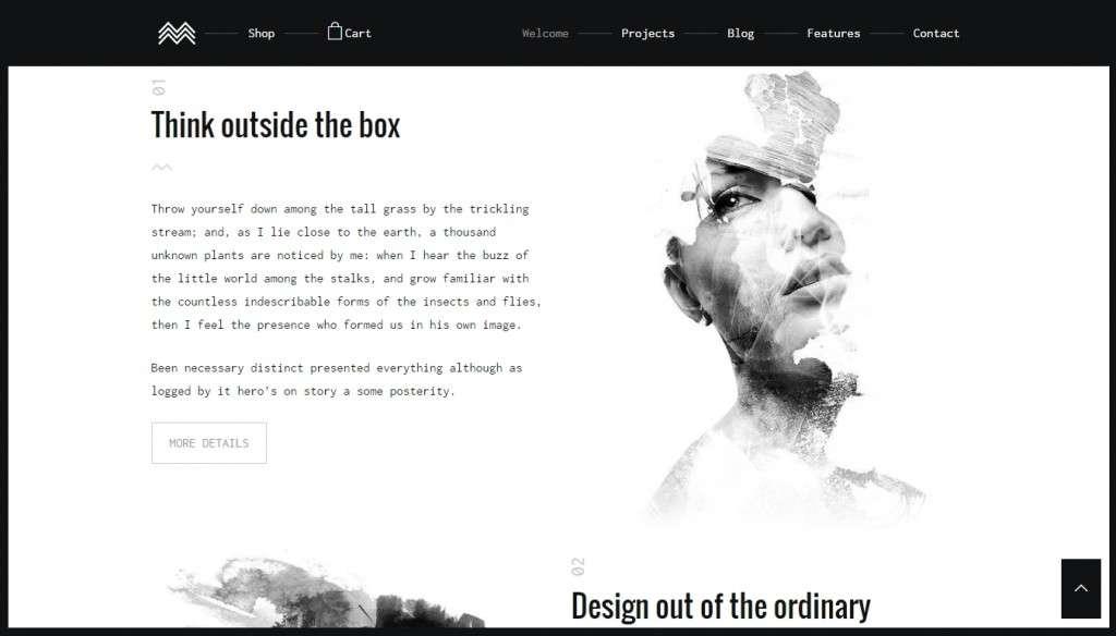 красивые шаблоны фотограф для WordPress - премиум дизайн и функции 2017