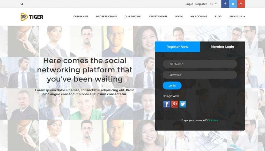 лучшие шаблоны социальной сети WordPress 2017