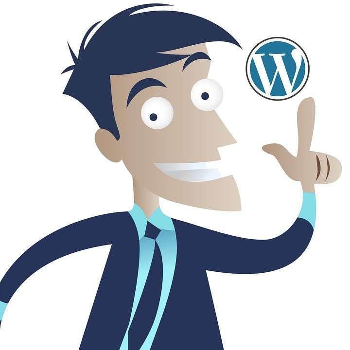 Использовать WordPress для любых целей — примеры 2017