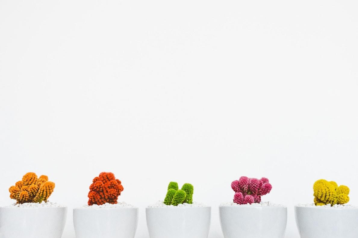 Вариативный товар WooCommerce: продажа товаров на любой вкус