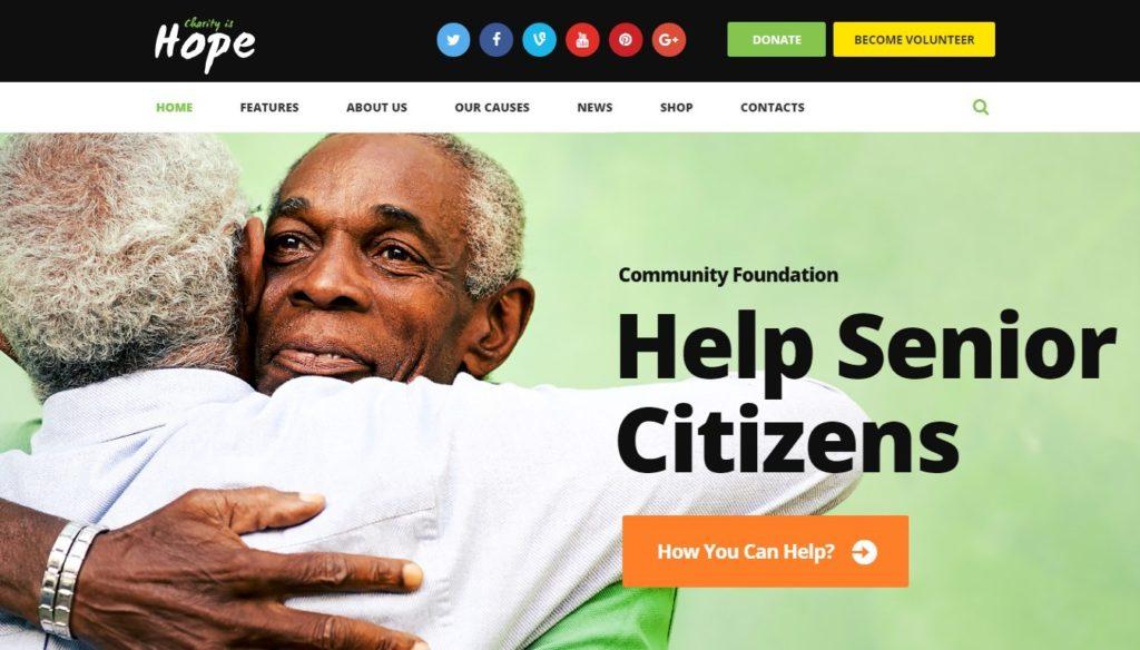 шаблоны сайтов организации для бизнеса и благотворительности 08