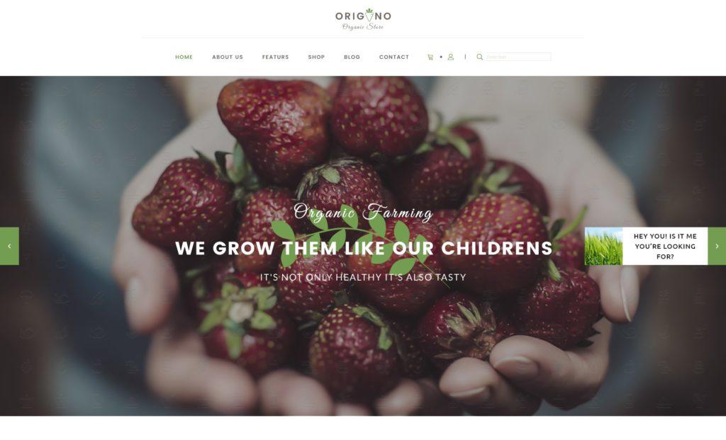 лучшие макеты сайтов с невероятно крутым оформлением 17