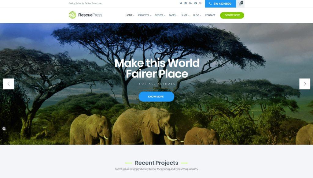 сайт экологической организации на WordPress с функцией сбора средств 04