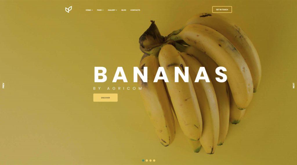 сайт экологической организации на WordPress с функцией сбора средств 10