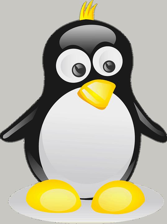 Курсы Linux онлайн: от работы с командной строкой до системного администрирования